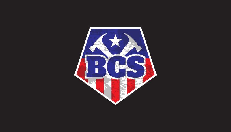 bcs_sample_1.png