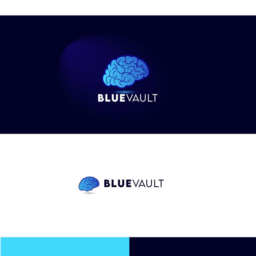 BlueVault_Logo.jpg