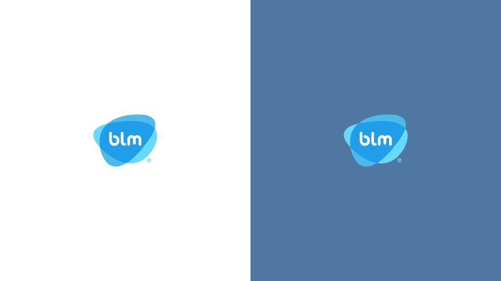 bml1234.jpg