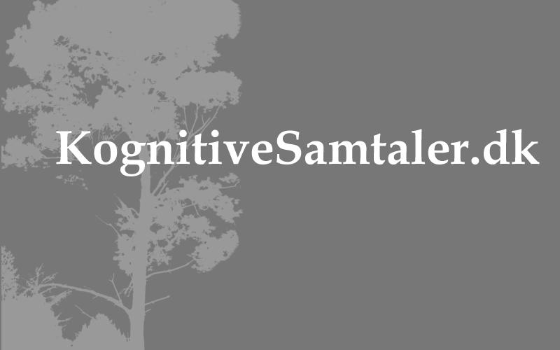 kognitive3.png