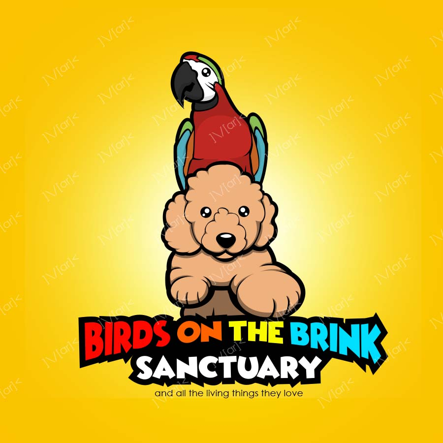 Mark - NWCreatives (Birds on the Brink Sanctuary)2.jpg