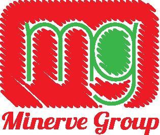minerver.png