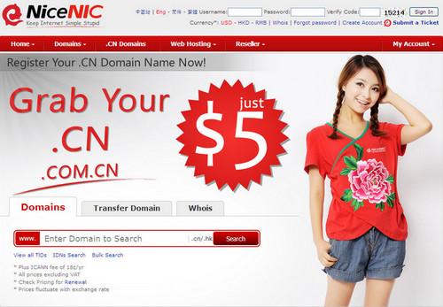 nicenic homepage.jpg