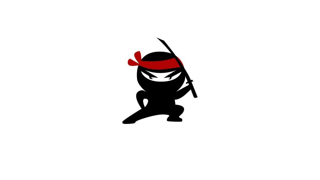 ninja_decals2.jpg