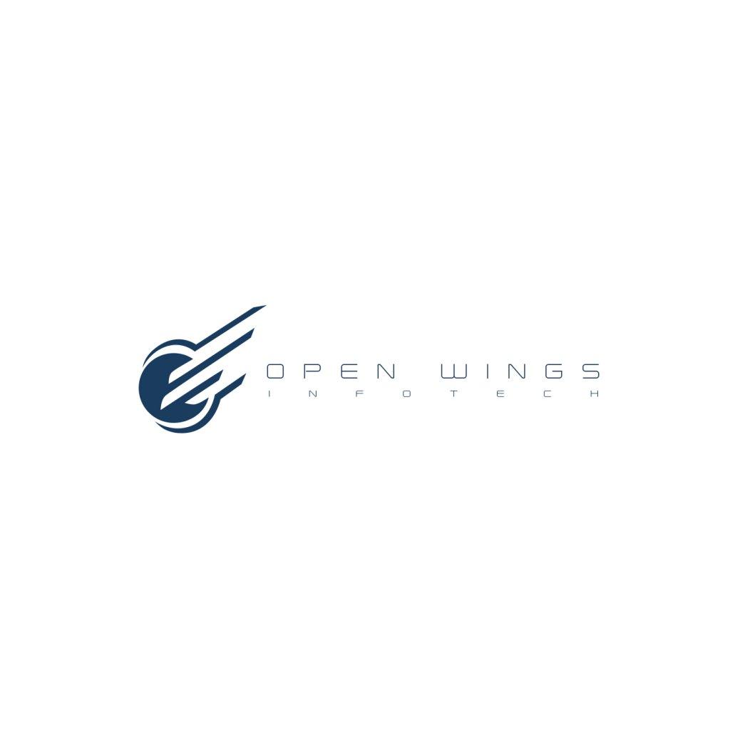 Open Wings Infotech3.jpg