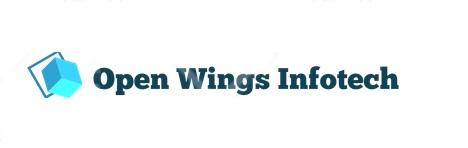 Open wings.jpg
