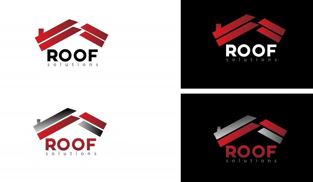 roof saloutin-01.jpg