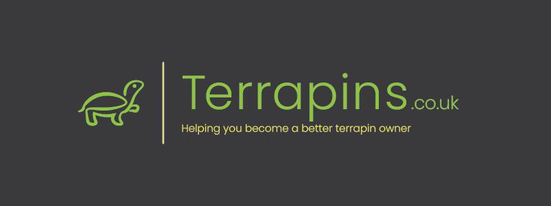sample_terrapin2.png