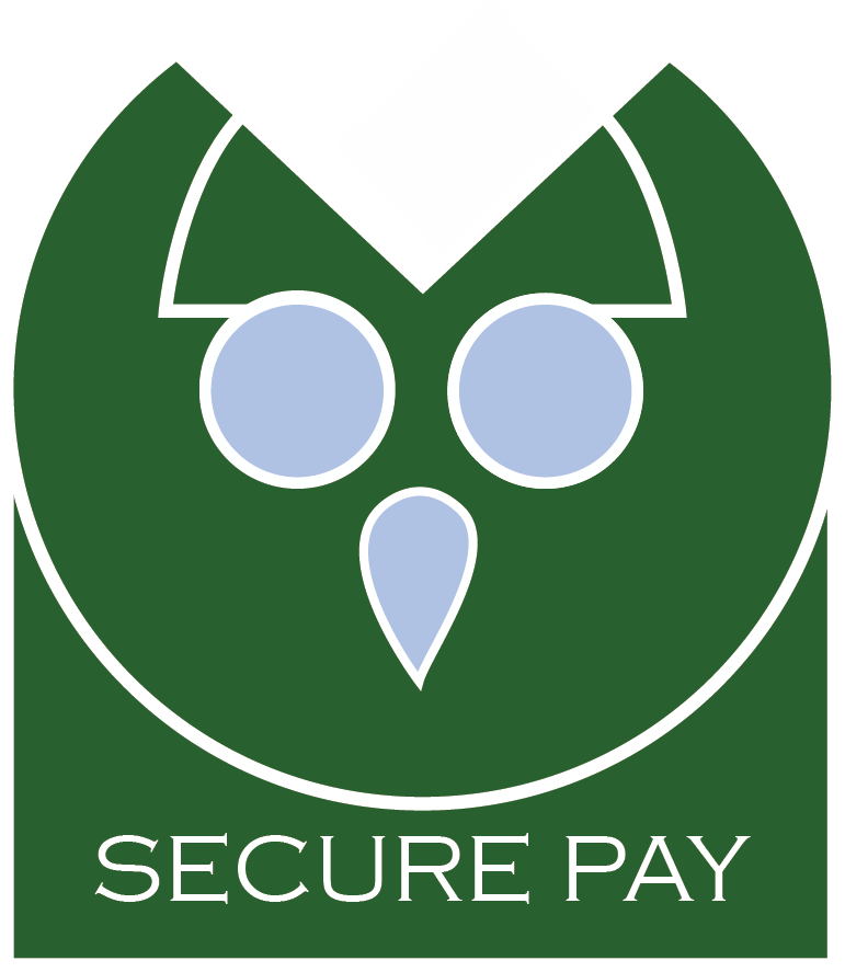 SECURE PAY.png