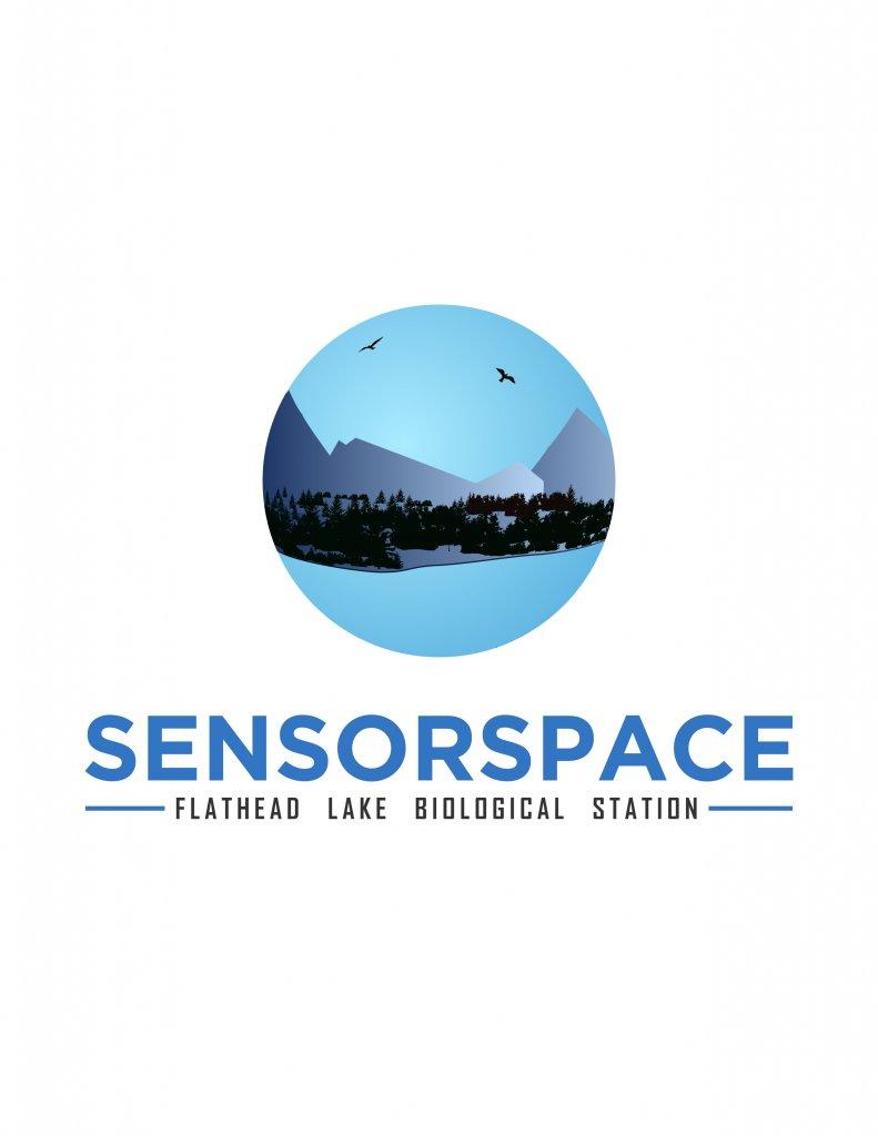 sensor space logo.jpg