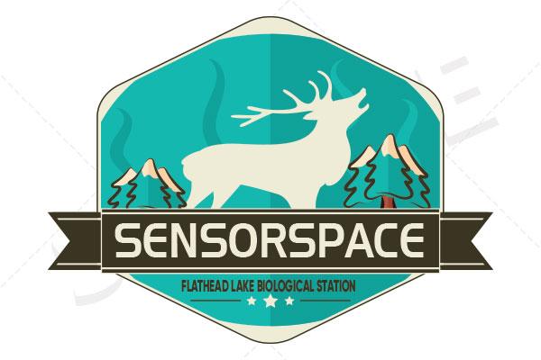 SENSORSPACE-2.jpg