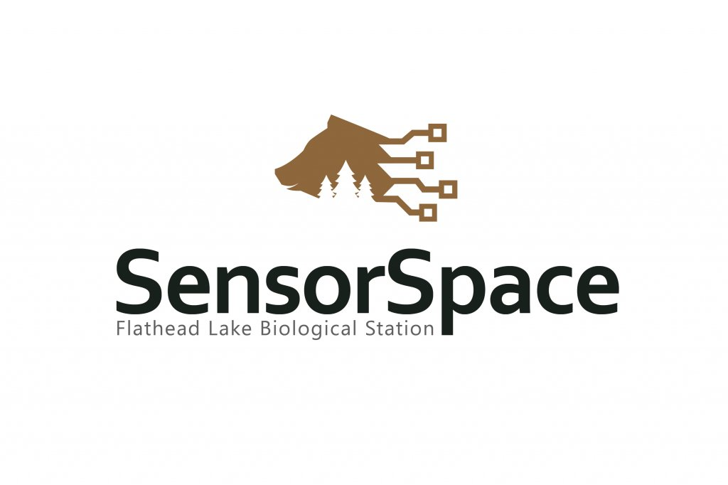 sensorspace.jpg