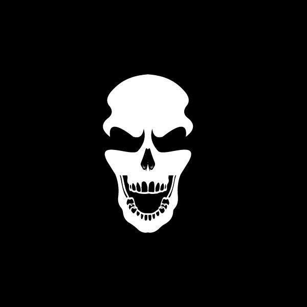 skulllogo1.jpg