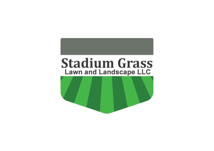 STADIUM-GRASS.jpg