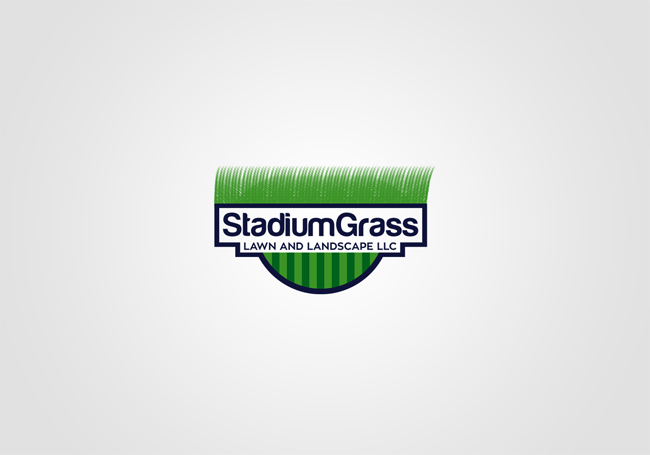 StadiumGrass copy.png