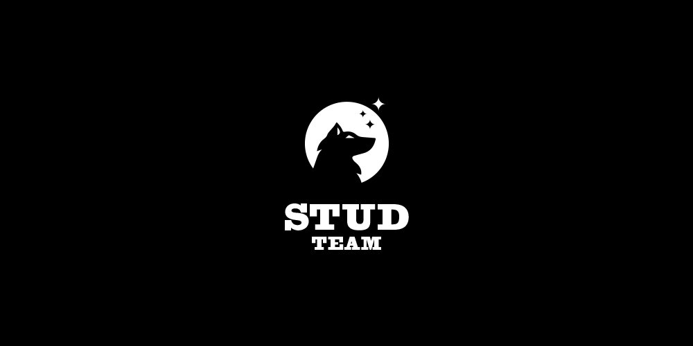 studteam 2.png