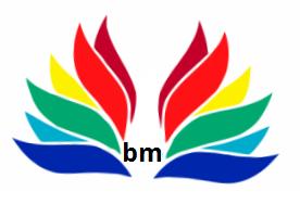 bm 3.PNG